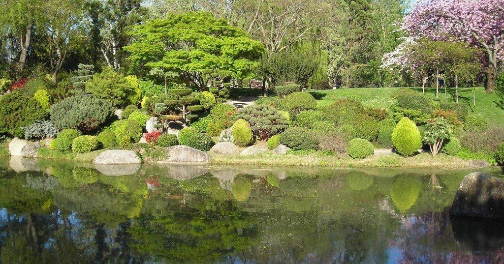 Visite du parc japonais de toulouse niwaki for Rocher jardin japonais